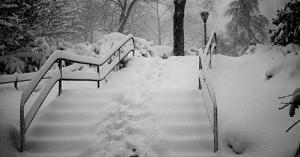 blizzard96.03